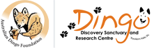 Australian Dingo Foundation Logo